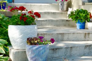 Garden steps with flowers in pots